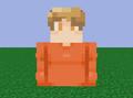 Play4Ninja avatar