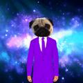 Puhgs avatar
