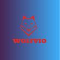 WolfvioStreams avatar