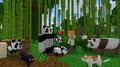 minecraft fan2380 avatar