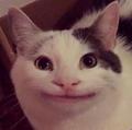 Flaac avatar