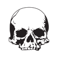FinGeisthauser avatar