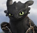 ToothlessTheNightFury avatar