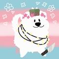 His_Majestii_Of_Despair avatar
