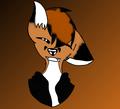 FoxCraft2006 avatar