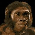 ZyKern avatar