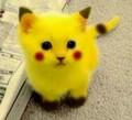 CatCrafter7 avatar