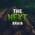 TheNextBrain avatar