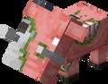 Zogland avatar