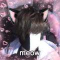 ArsonisticLive avatar