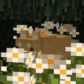 Natyro avatar