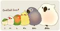 AnimeBird avatar