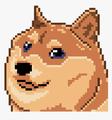 8EnderDoge8 avatar