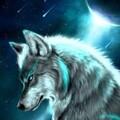 Neox213 avatar