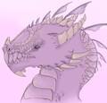DragonSnap avatar