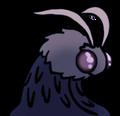 Imic avatar