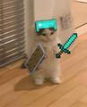 PythonWolf avatar