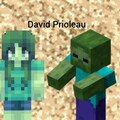 David Prioleau avatar