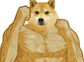 Balltzessama avatar