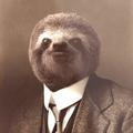 Baba_Pig avatar