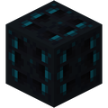 coastredwoods1254 avatar