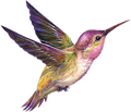 SILVERxFLAME avatar