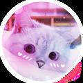 Momsaidno avatar