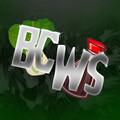 BokChoyWithSoy avatar