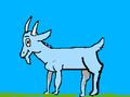 MootGoat360 avatar