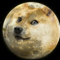 The moon doge avatar