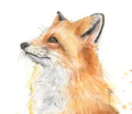 foxgirlcraft avatar