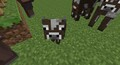 furbykid713 avatar