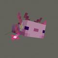 seska avatar