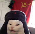 XE Ksenon avatar