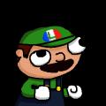 WeegeepieFrench avatar