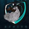 DJDragonBroYT avatar