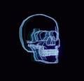 skullyjkc avatar