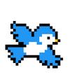 Bearies avatar
