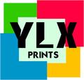 YLX CARPITIONS avatar