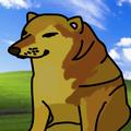 wittypeex avatar