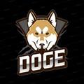 MrMcDoge avatar