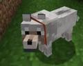 2Tea2Dream avatar