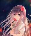 ShadowGirl550 avatar