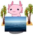 ant259 avatar