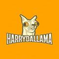 Harrydallama avatar