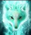 Blitzwolf avatar