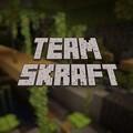 TeamSkraft avatar