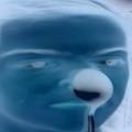 Azkyy avatar