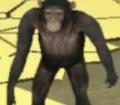player1off avatar