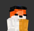 Cometfox27 avatar